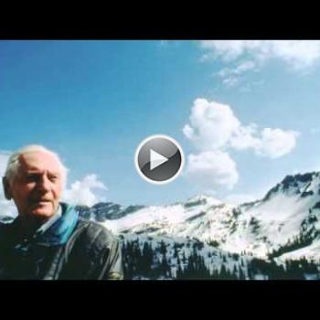 Embedded thumbnail for Bill Levitt
